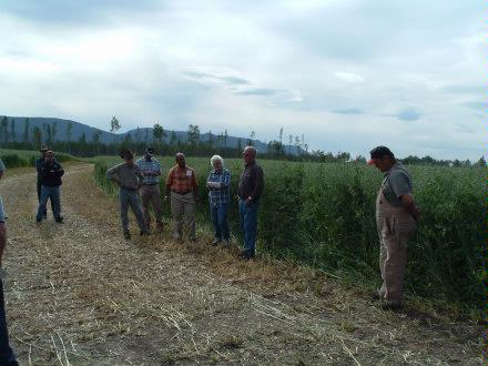 0805 Field Days 2 August 2005