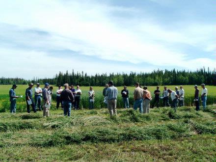 0805 Field Days August 2005