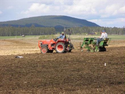 Corky   Seeding plot