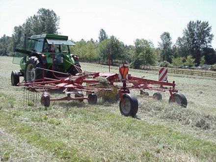 Daryl raking2