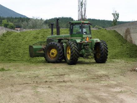 Harvesting Silage Admeier Farms 3