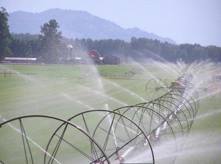 Irrigation in Fraser Valley 2007