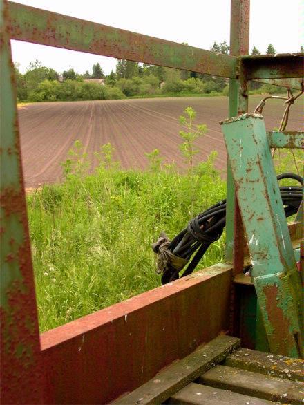 Victoria Corn Field
