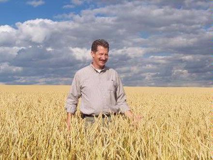 Wheat field with Doug
