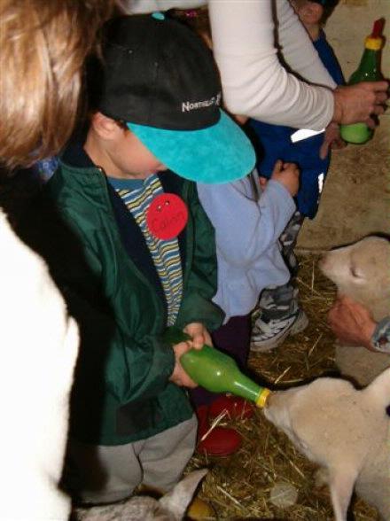 calvin feeding